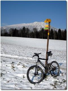 Kühles Wintermärchen...