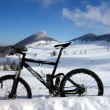 Snowbiken im Jura