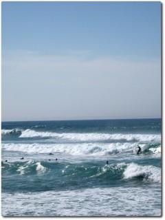 Surfen im Februar