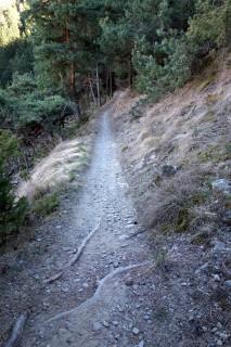 4er Trail nach Morter