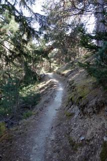 9er Trail nach Prad