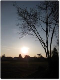 Abendsonne und kühle Bise