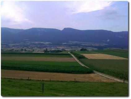 Blick auf die Aare und den Jura