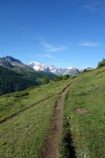 Trailstück Abeweid