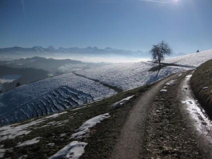 Abfahrt nach Langnau mit toller Aussicht