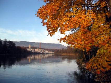 Resten des goldenen Herbstes
