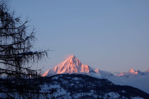 Aletschhorn im Abendrot