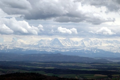 Alpenblick vom Jura