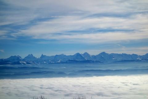 Berner Alpen über dem Nebel