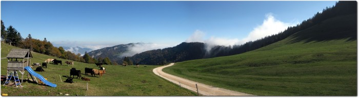 Panorama Althüsli