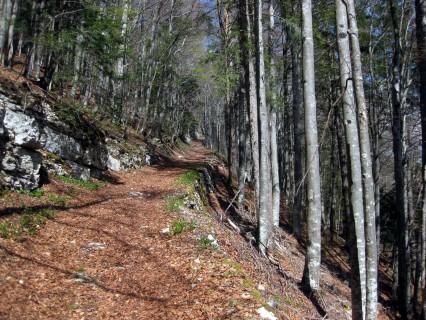 Aufstieg Grandval - Mont Raimeux - Historische Strasse