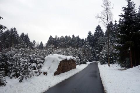 Zum Glück nicht überall Schnee