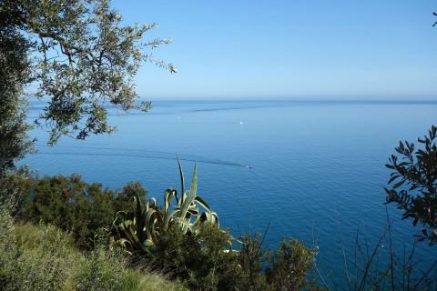 Aufstieg zum Hotel Rosita - Blick auf das Meer