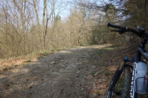 Toller Aufstieg auf einer Forststrasse