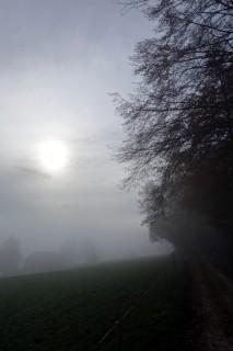 Und wieder zurück in der Nebelsuppe