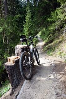 Traumtrail retour nach Davos - Höhe Bäbiwald