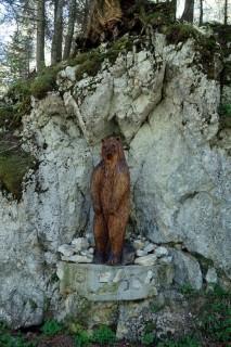 Es hat doch Bären...