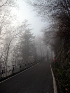 Nebelgrenze im Aufstieg zum Balmberg