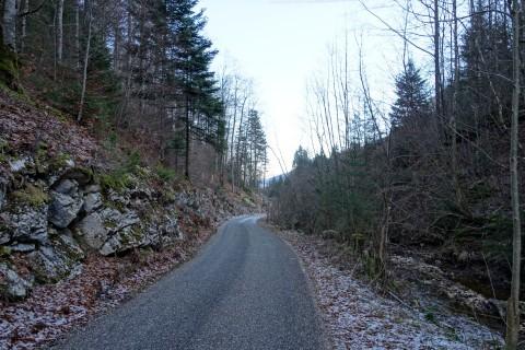 Aufstieg entlang des Bantlibach