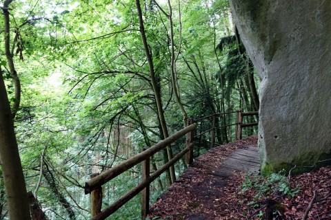 Trail hoch über dem Krauchthal