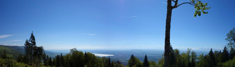 Panorama ob Baumles