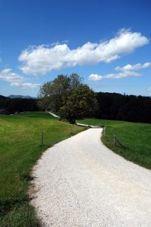 Balmberg nach dem Seilpark