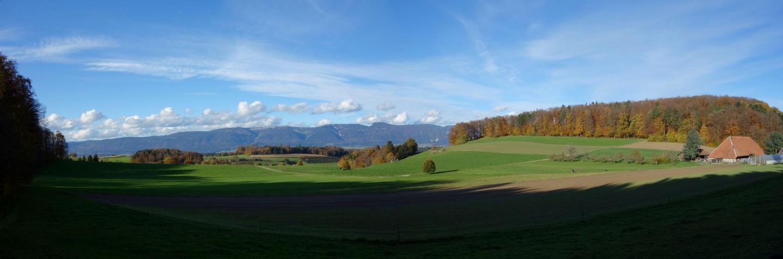Blick in Richtung Jura