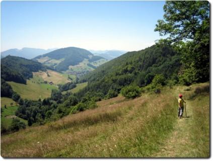 Wanderweg Belchenflue entlang Dürstelberg
