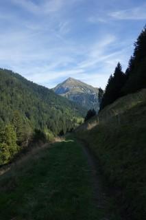 Auf der Alpin Bike ins Suldtal
