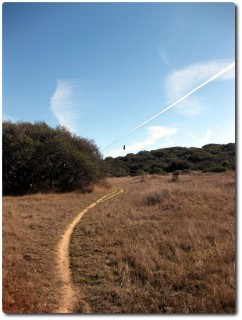 Trail, Adler und Flugzeug...