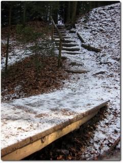 Treppen und Trails im Bireggwald