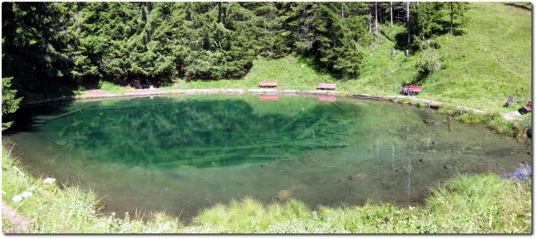 Blauseeli auf der Grimmialp