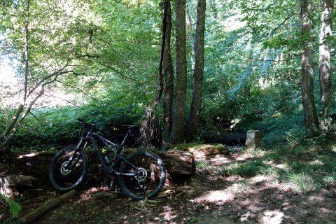 Grenzstein 157 Bois Rosset