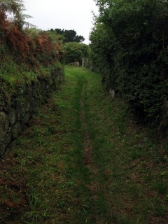 Bretonische Feldwege