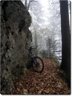 Trail zum Brüggli