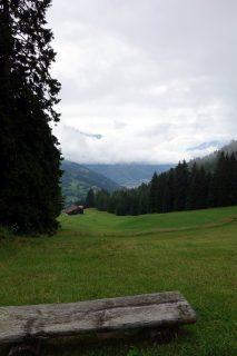 Ausblick bei Bühl