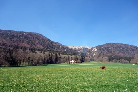 Aussicht Burghof
