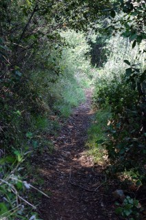 Knifflige Trails am Monte Caprazoppa