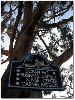 Wegweiser in Carmel