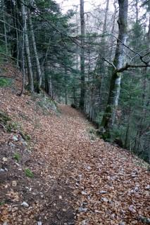 Trail in den Chessel runter