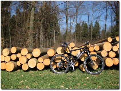 Geputztes Mountainbike vor frischem Holz