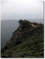 Muir Bay