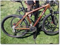 Cafee Holz-Carbon Bike