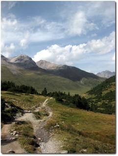 Flow pur vom Pass da Costainas runter zur Alp Astras