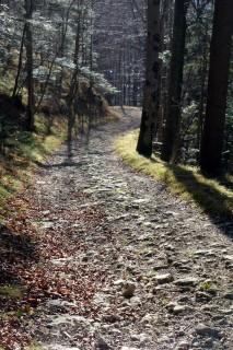 Steile Abfahrt zur Birse