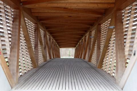Holzbrücke Emme