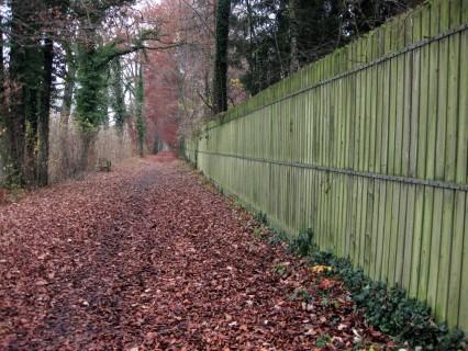 Herbststimmung entlang der Emme