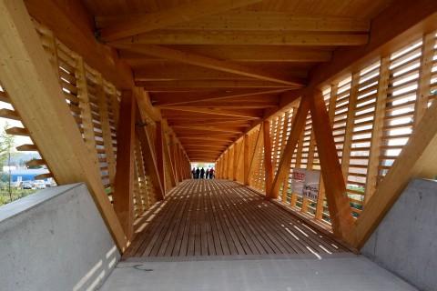 Holzbrücke über die Emme