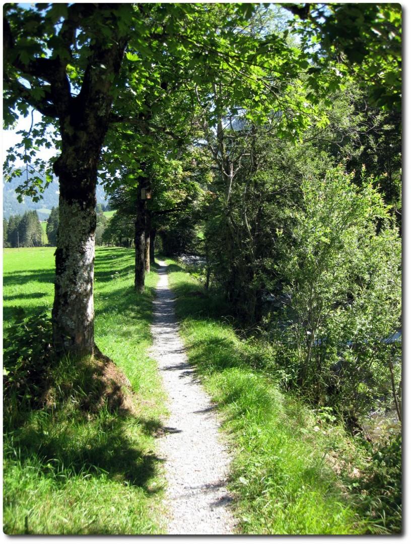 Trail entlang der Fildrich im Diemtigtal