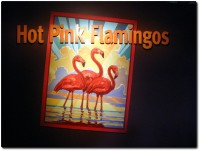 Monterey Bay Aquarium - Flamingo Sonderausstellung